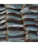 Fileletes de bacaladilla. Caja 2 Kgs.